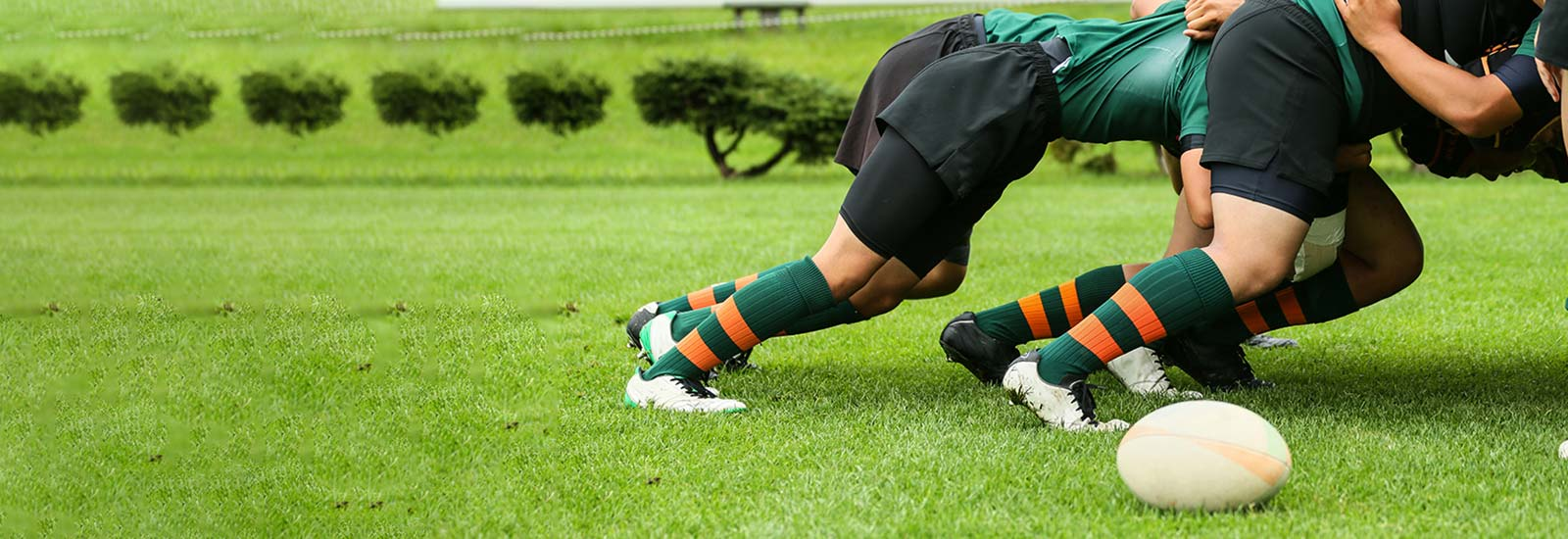 Sports_Landing_page_Rugby_Tile